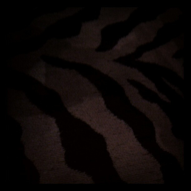 #jj leopard stripes